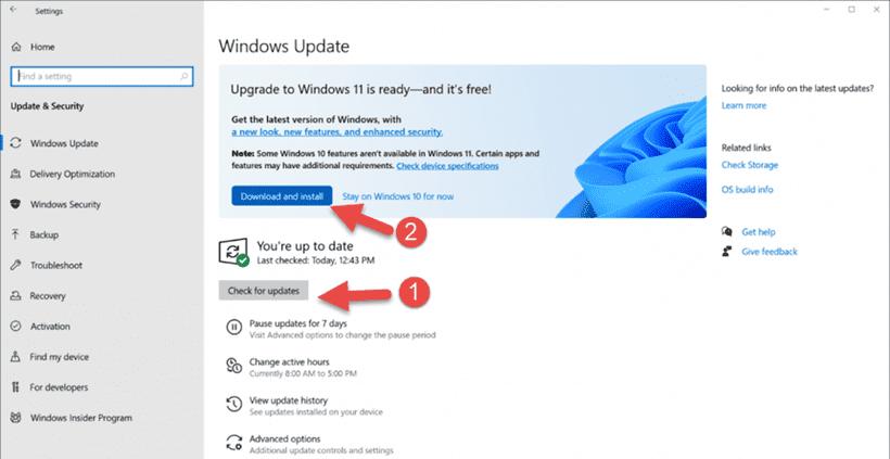 Cách update Win 11 cập nhật Windows 11 chính thức